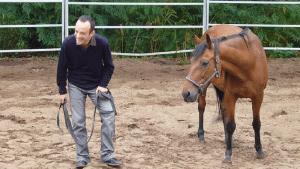 Management et cheval
